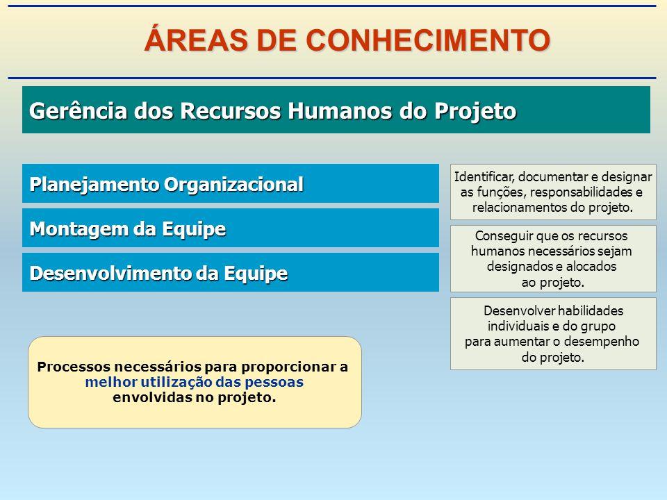 ÁREAS DE CONHECIMENTO Gerência dos Recursos Humanos do Projeto