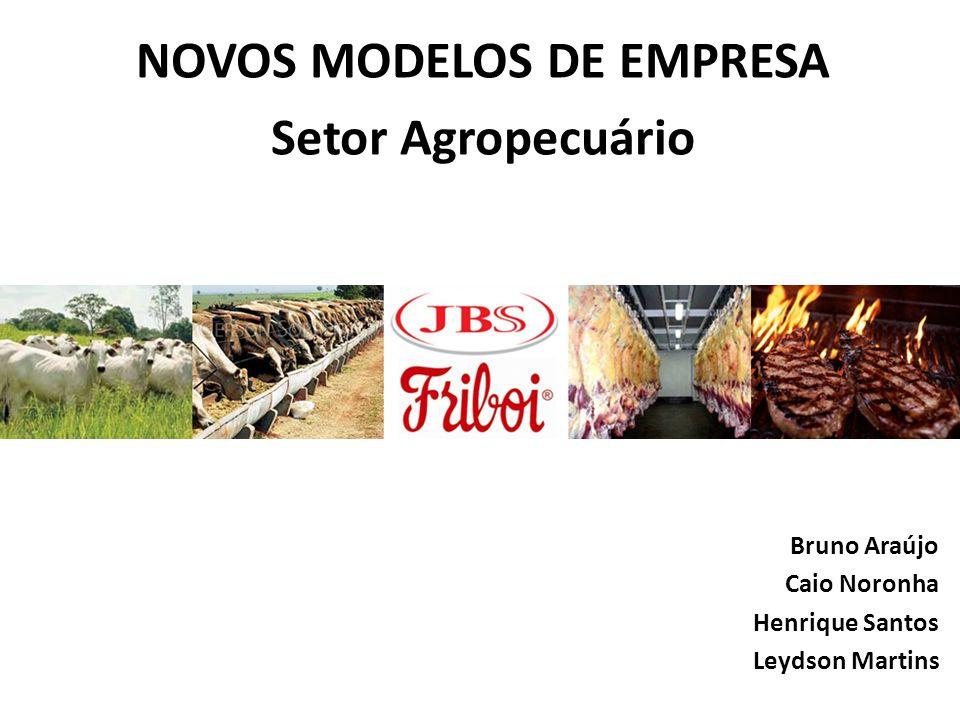 NOVOS MODELOS DE EMPRESA Setor Agropecuário