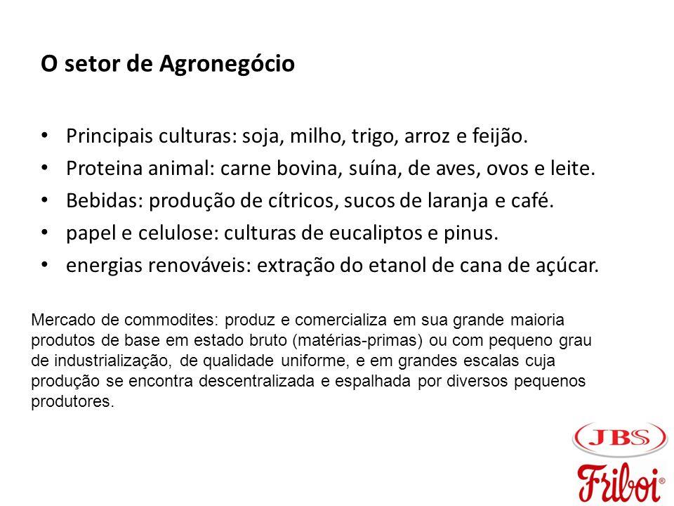 O setor de Agronegócio Principais culturas: soja, milho, trigo, arroz e feijão. Proteina animal: carne bovina, suína, de aves, ovos e leite.