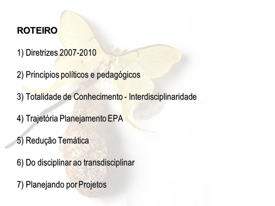 ROTEIRO 1) Diretrizes 2007-2010 2) Princípios políticos e pedagógicos 3) Totalidade de Conhecimento - Interdisciplinaridade 4) Trajetória Planejamento EPA 5) Redução Temática 6) Do disciplinar ao transdisciplinar 7) Planejando por Projetos