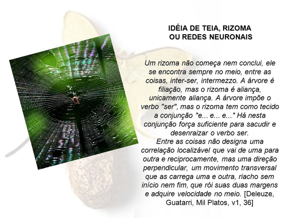 IDÉIA DE TEIA, RIZOMA OU REDES NEURONAIS Um rizoma não começa nem conclui, ele se encontra sempre no meio, entre as coisas, inter-ser, intermezzo.