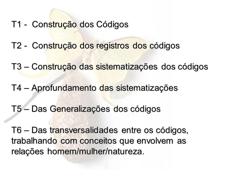 T1 - Construção dos Códigos T2 - Construção dos registros dos códigos T3 – Construção das sistematizações dos códigos T4 – Aprofundamento das sistematizações T5 – Das Generalizações dos códigos T6 – Das transversalidades entre os códigos, trabalhando com conceitos que envolvem as relações homem/mulher/natureza.
