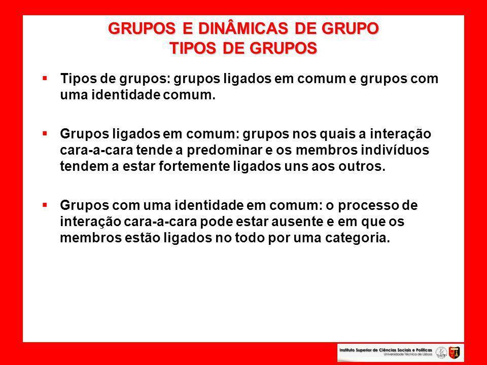 GRUPOS E DINÂMICAS DE GRUPO TIPOS DE GRUPOS