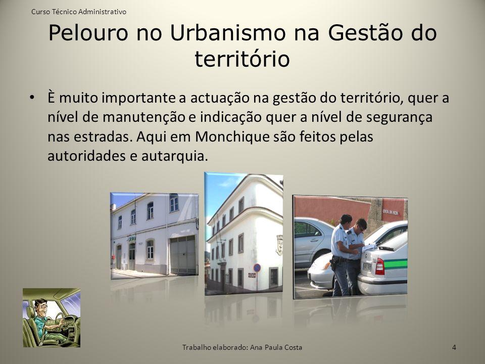 Pelouro no Urbanismo na Gestão do território