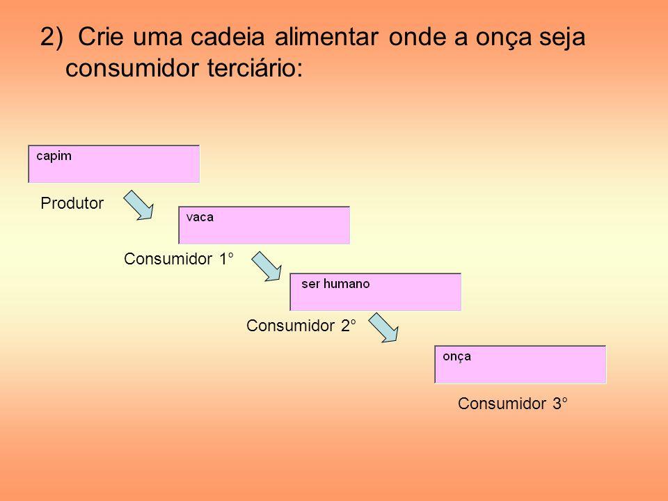 2) Crie uma cadeia alimentar onde a onça seja consumidor terciário: