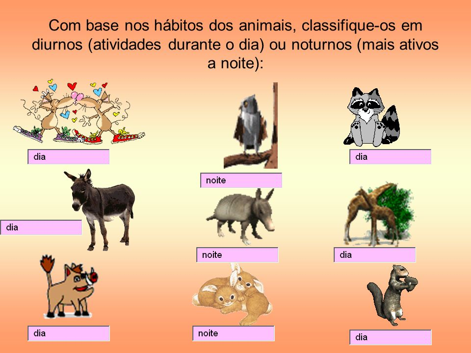 Com base nos hábitos dos animais, classifique-os em diurnos (atividades durante o dia) ou noturnos (mais ativos a noite):