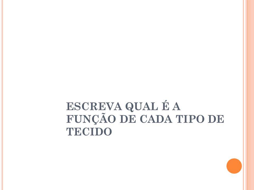 ESCREVA QUAL É A FUNÇÃO DE CADA TIPO DE TECIDO