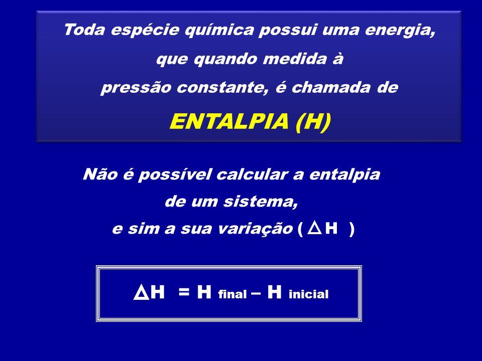 ENTALPIA (H) H = H final – H inicial