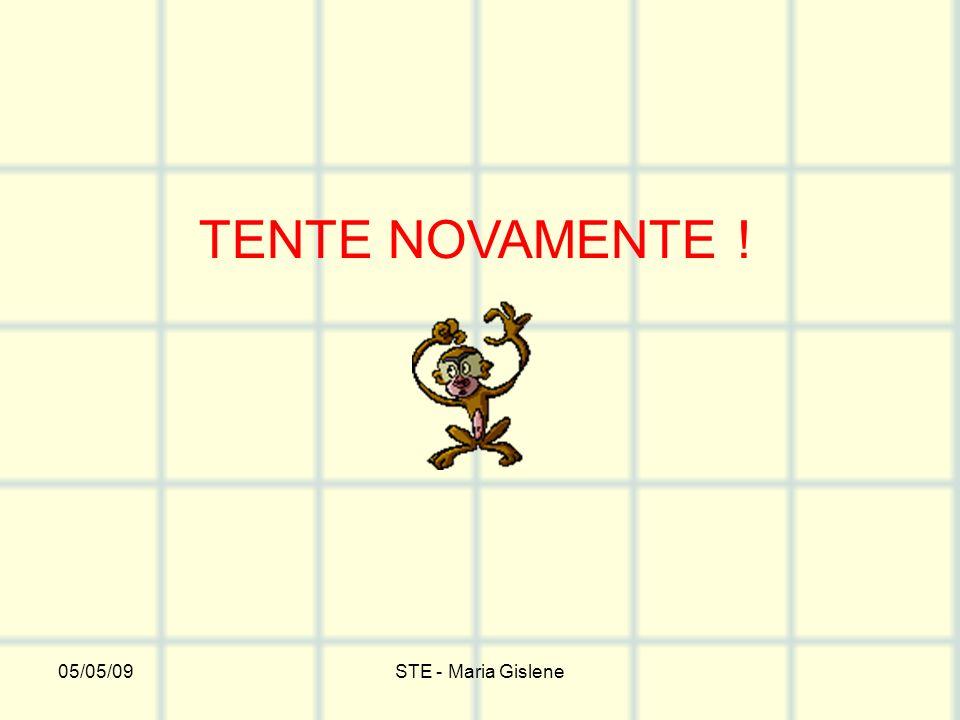 TENTE NOVAMENTE ! 05/05/09 STE - Maria Gislene