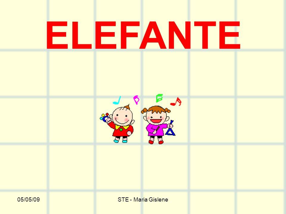 ELEFANTE 05/05/09 STE - Maria Gislene