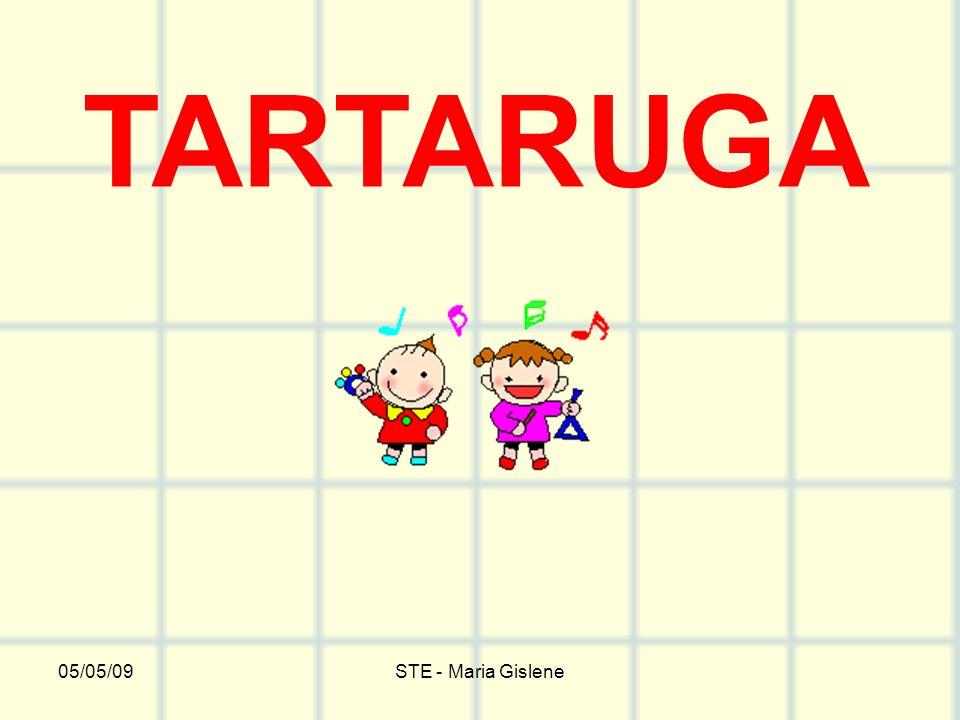 TARTARUGA 05/05/09 STE - Maria Gislene