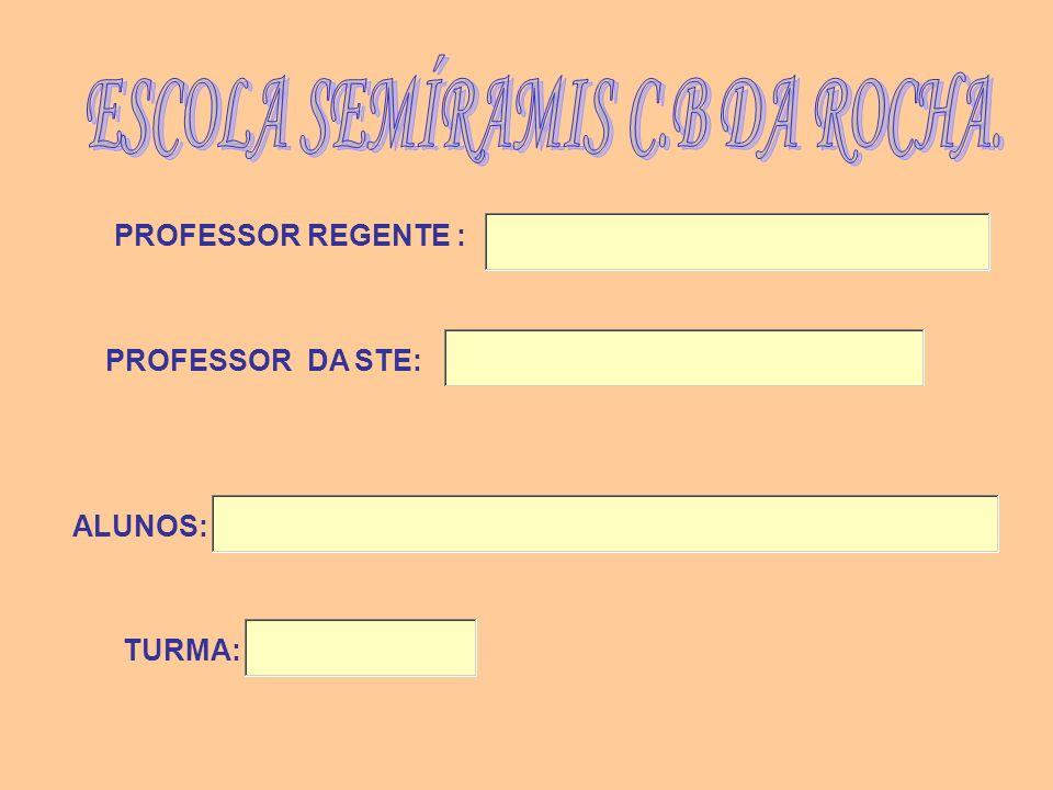 ESCOLA SEMÍRAMIS C.B DA ROCHA.