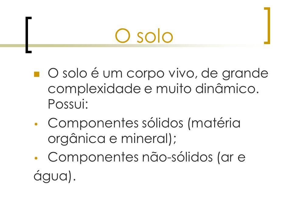O solo O solo é um corpo vivo, de grande complexidade e muito dinâmico. Possui: Componentes sólidos (matéria orgânica e mineral);