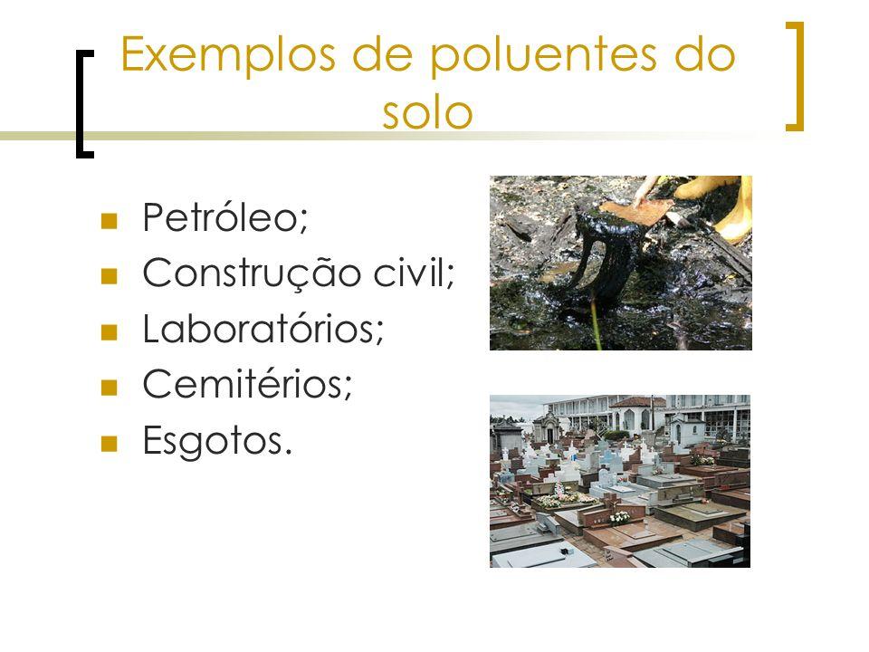 Exemplos de poluentes do solo