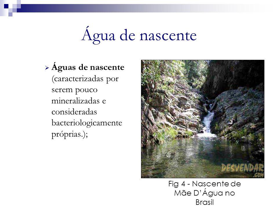 Fig 4 - Nascente de Mãe D'Água no Brasil