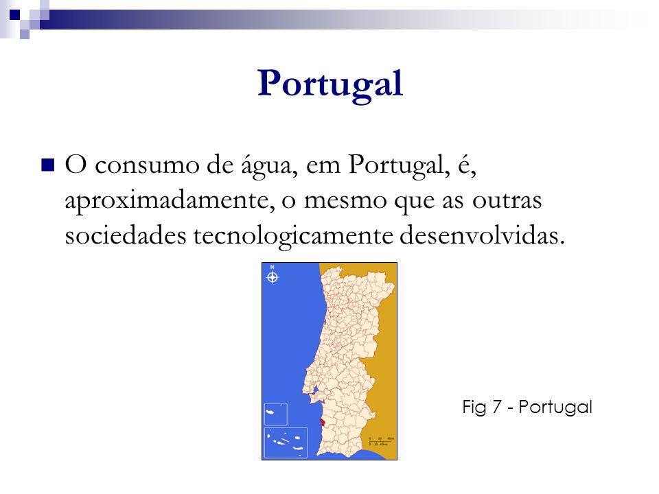 Portugal O consumo de água, em Portugal, é, aproximadamente, o mesmo que as outras sociedades tecnologicamente desenvolvidas.