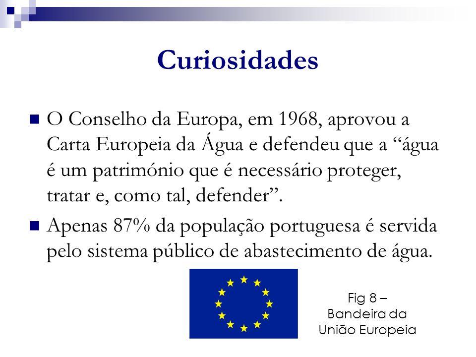 Fig 8 – Bandeira da União Europeia