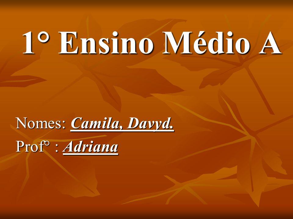 1° Ensino Médio A Nomes: Camila, Davyd. Prof° : Adriana