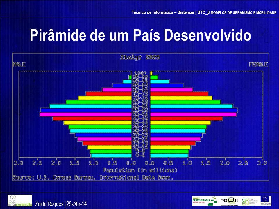 Pirâmide de um País Desenvolvido