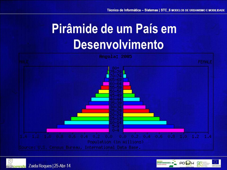 Pirâmide de um País em Desenvolvimento