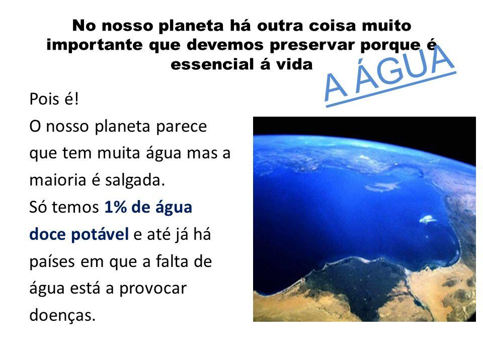 A ÁGUA No nosso planeta há outra coisa muito importante que devemos preservar porque é essencial á vida.