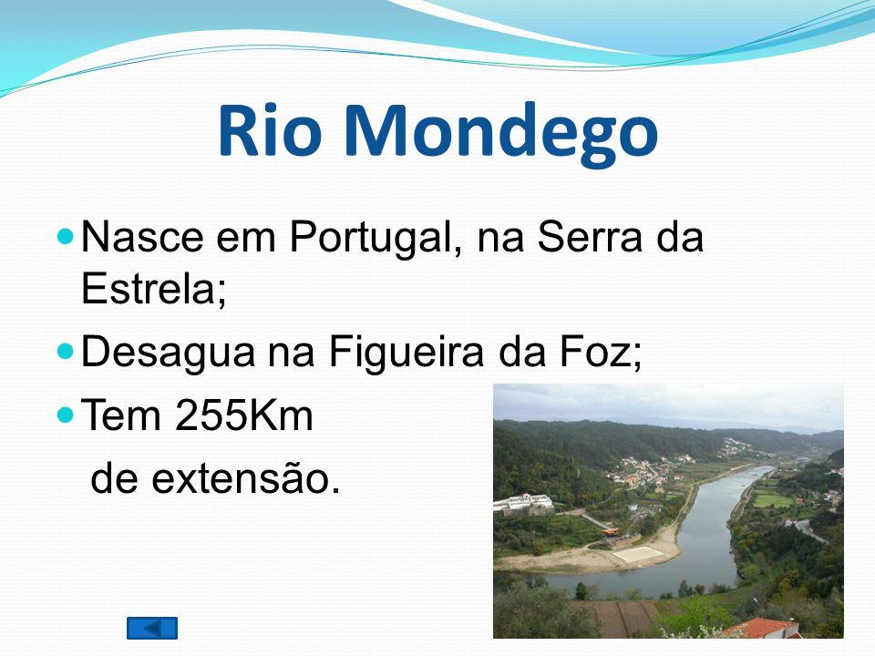 Rio Mondego Nasce em Portugal, na Serra da Estrela;