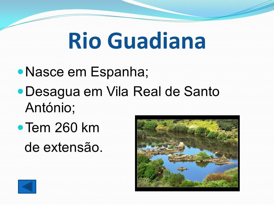 Rio Guadiana Nasce em Espanha; Desagua em Vila Real de Santo António;