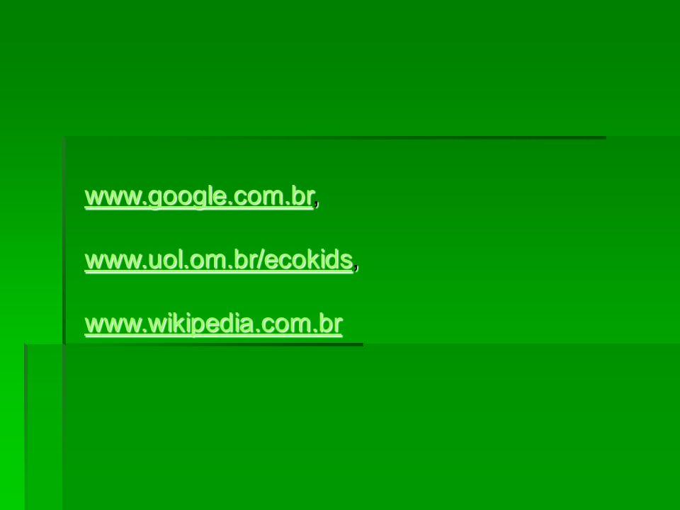 www.google.com.br, www.uol.om.br/ecokids, www.wikipedia.com.br