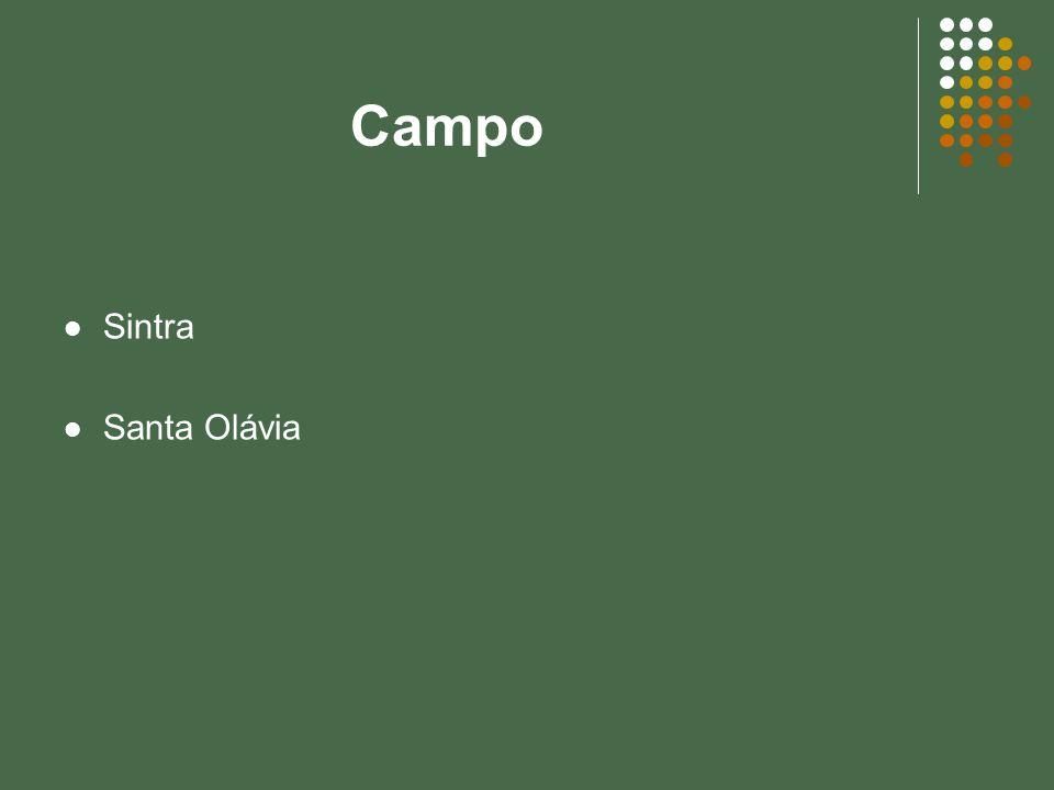 Campo Sintra Santa Olávia