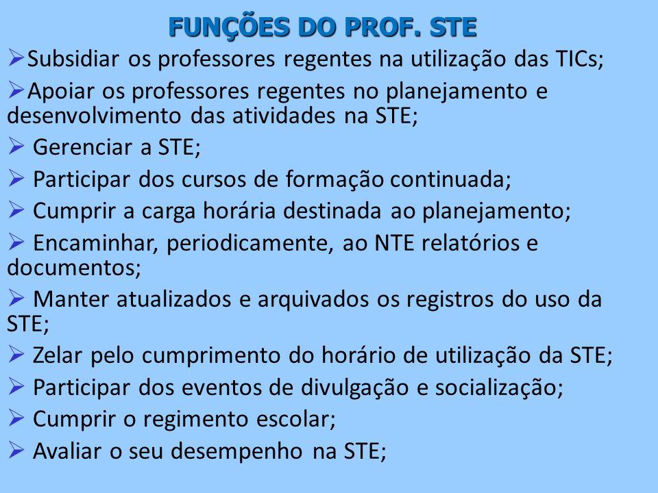 Subsidiar os professores regentes na utilização das TICs;