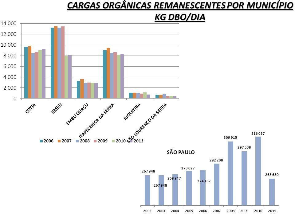 CARGAS ORGÂNICAS REMANESCENTES POR MUNICÍPIO KG DBO/DIA