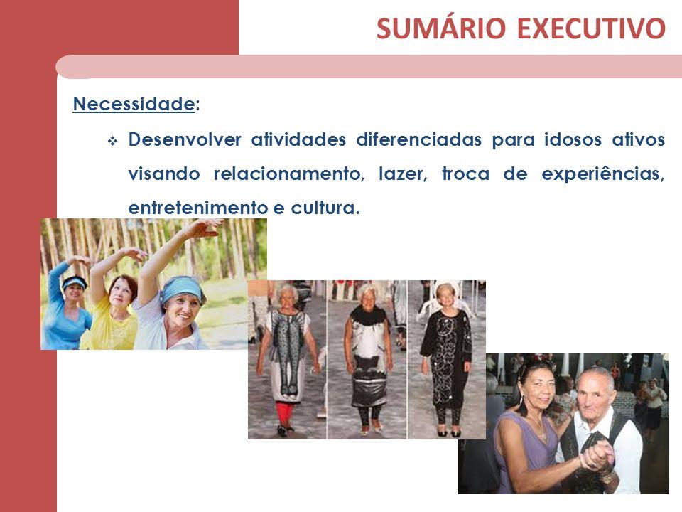 SUMÁRIO EXECUTIVO Necessidade: