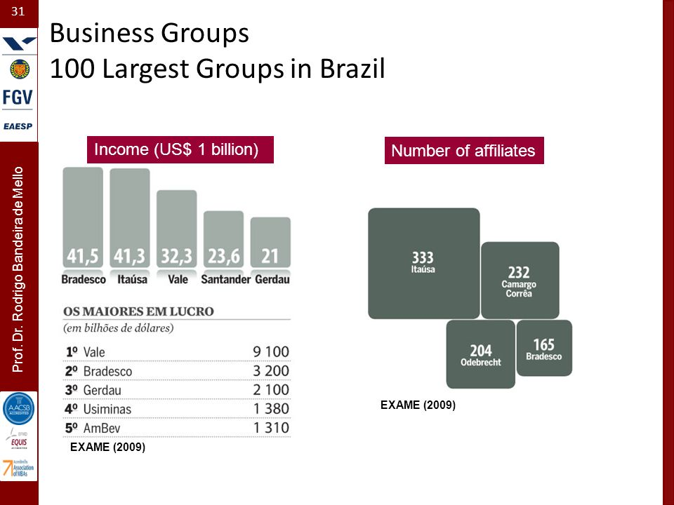 100 Largest Groups in Brazil