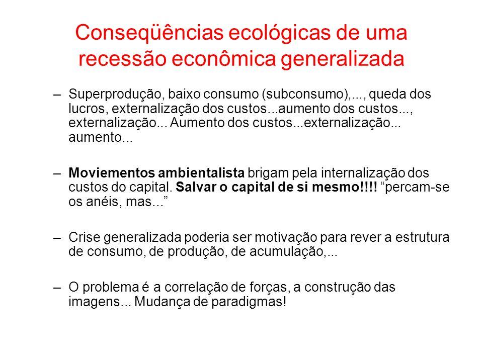 Conseqüências ecológicas de uma recessão econômica generalizada