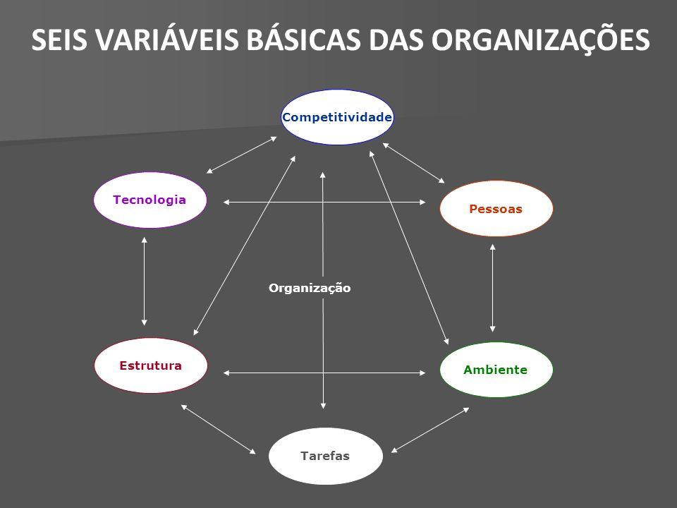 SEIS VARIÁVEIS BÁSICAS DAS ORGANIZAÇÕES