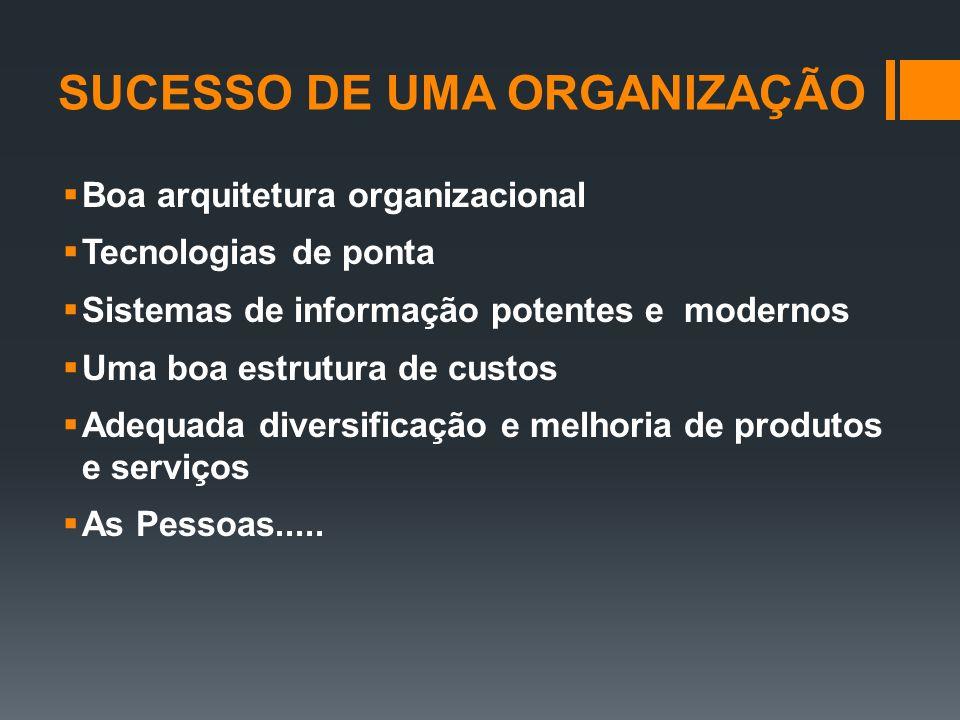 SUCESSO DE UMA ORGANIZAÇÃO