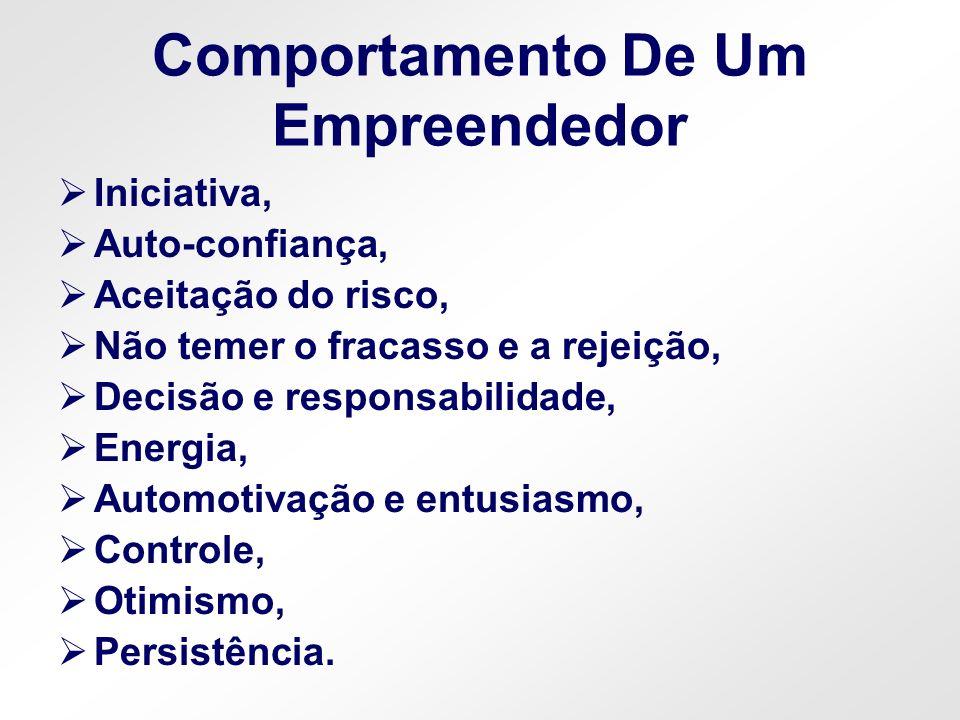 Comportamento De Um Empreendedor
