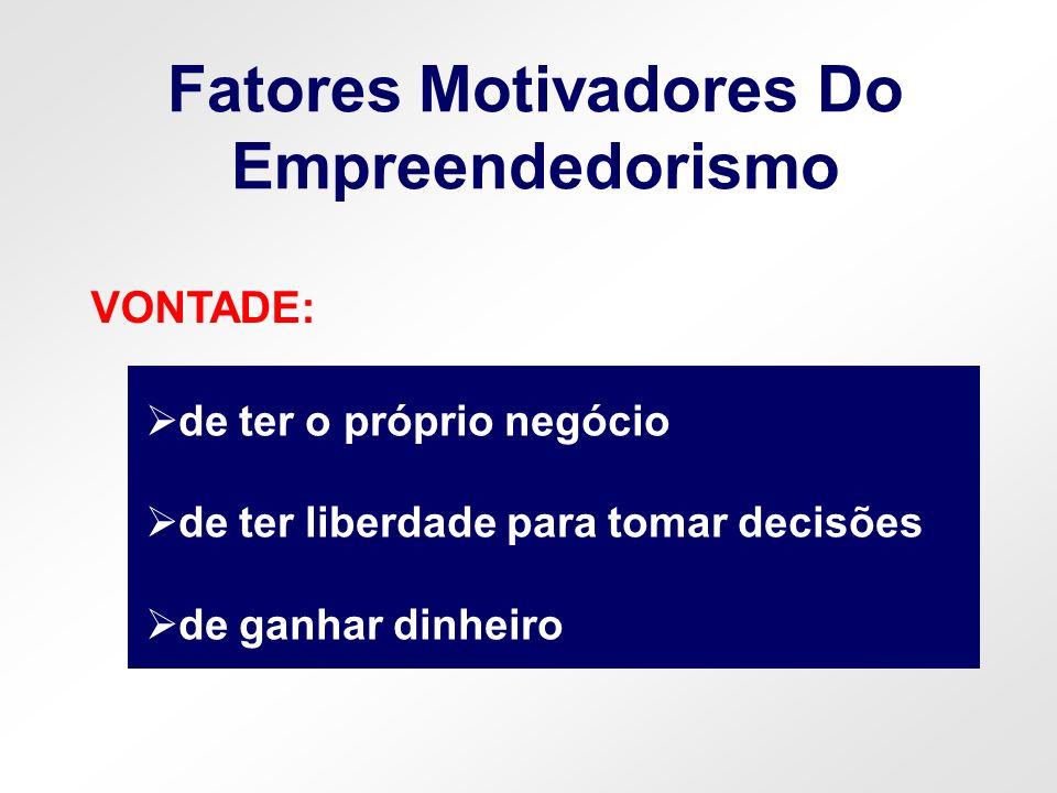 Fatores Motivadores Do Empreendedorismo