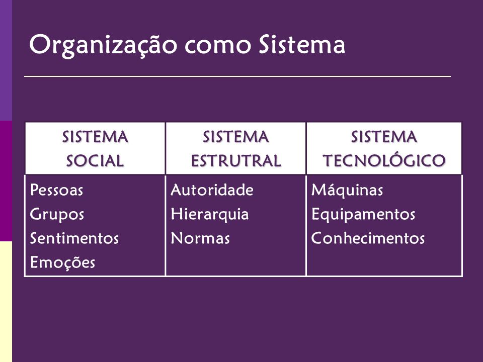 Organização como Sistema