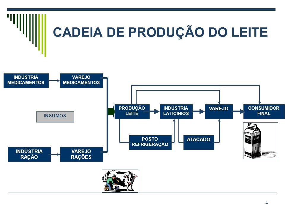 CADEIA DE PRODUÇÃO DO LEITE