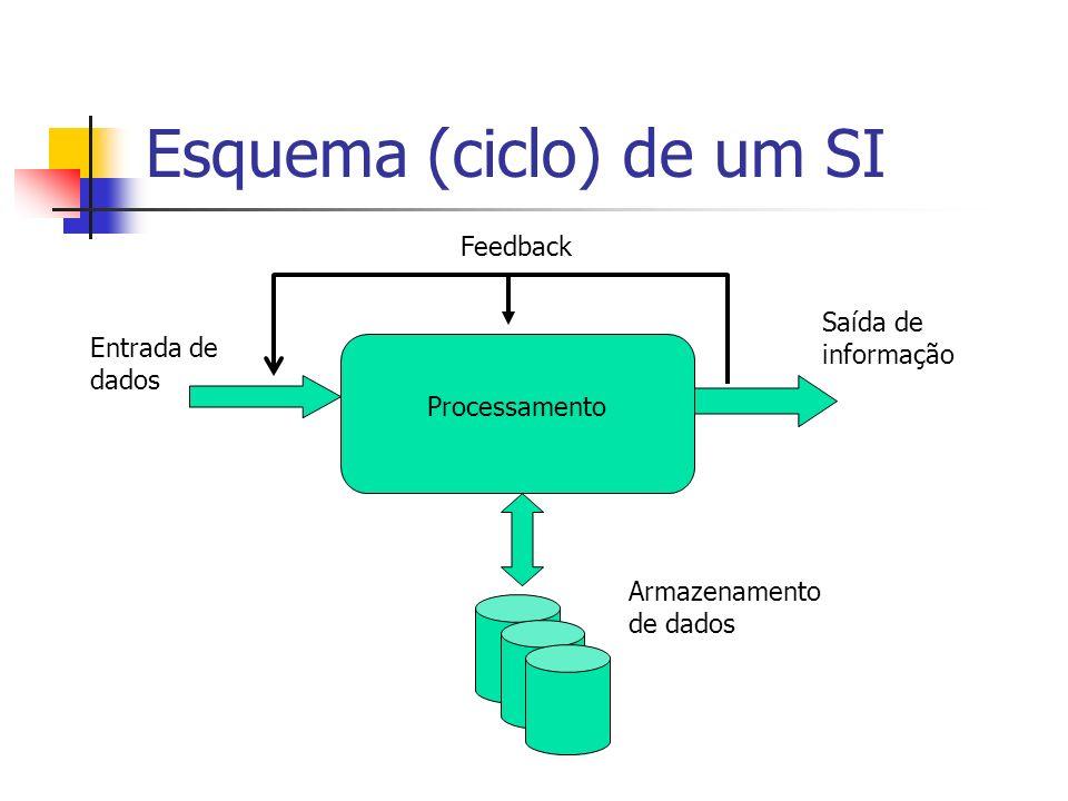 Esquema (ciclo) de um SI