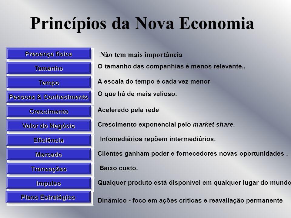 Princípios da Nova Economia