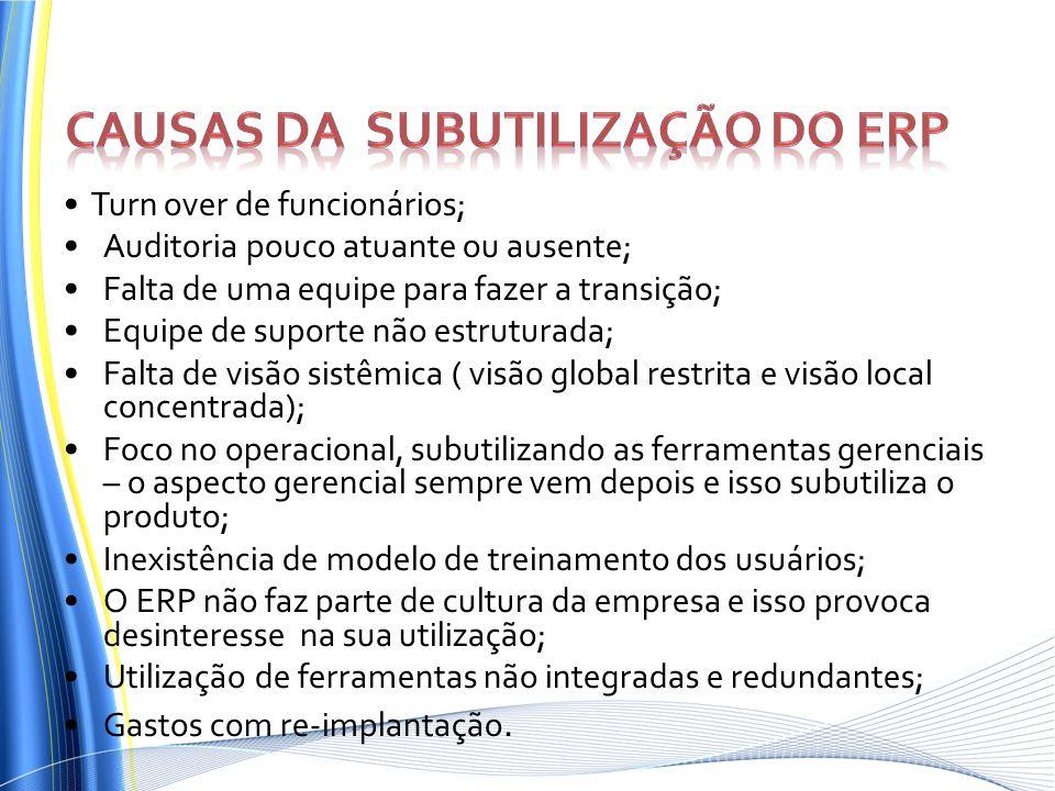 Causas da subutilização do ERP
