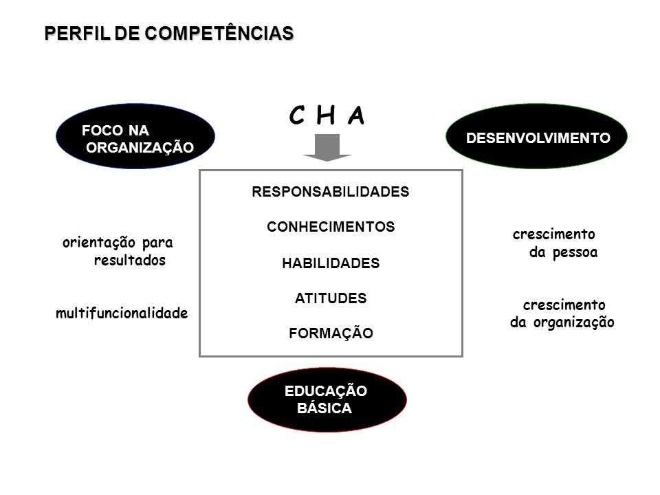 C H A PERFIL DE COMPETÊNCIAS FOCO NA ORGANIZAÇÃO DESENVOLVIMENTO