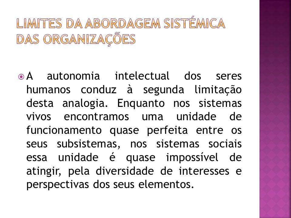 Limites da abordagem sistémica das organizações