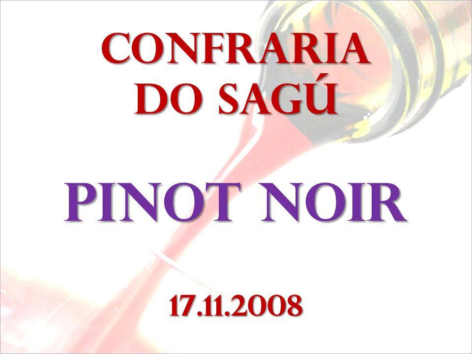 Confraria do sagú Pinot noir 17.11.2008
