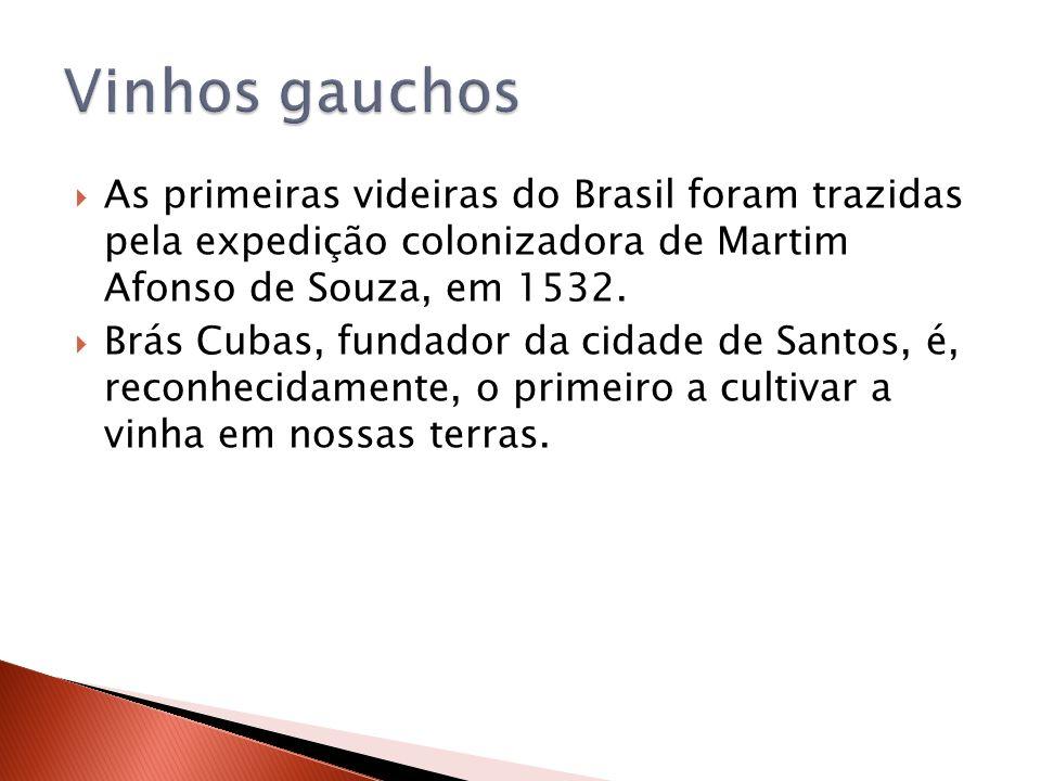 Vinhos gauchos As primeiras videiras do Brasil foram trazidas pela expedição colonizadora de Martim Afonso de Souza, em 1532.