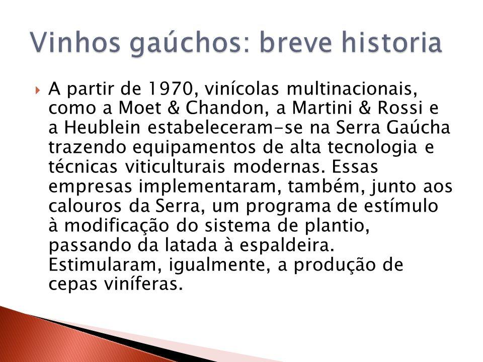 Vinhos gaúchos: breve historia