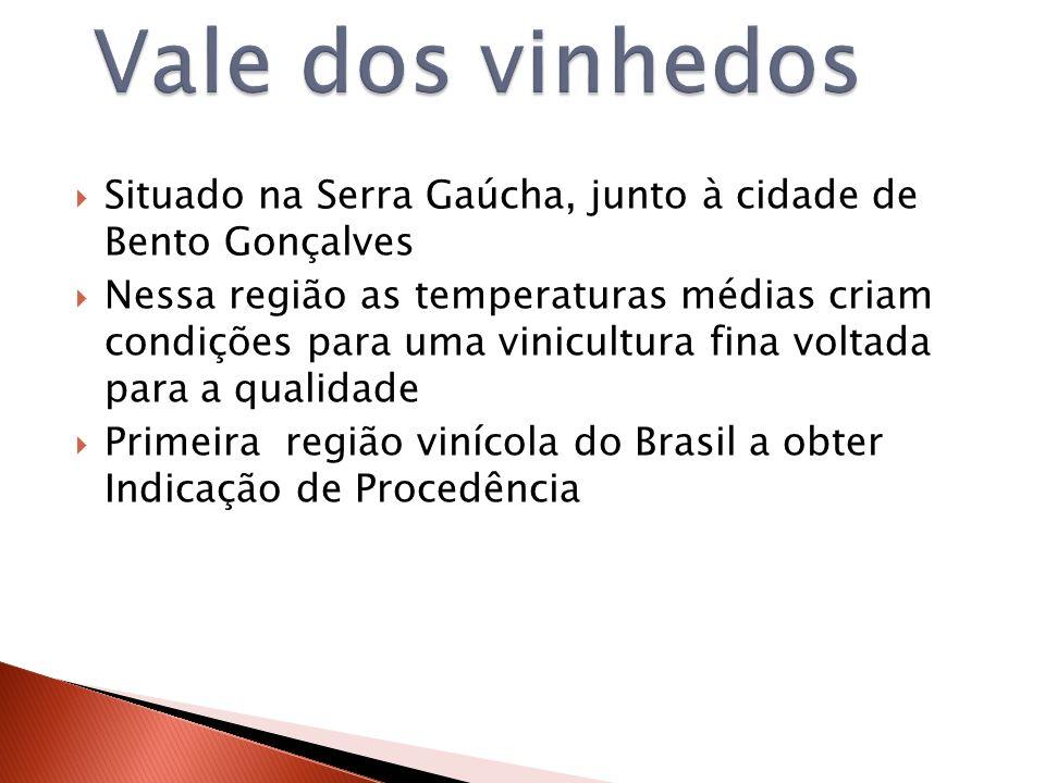 Vale dos vinhedos Situado na Serra Gaúcha, junto à cidade de Bento Gonçalves.