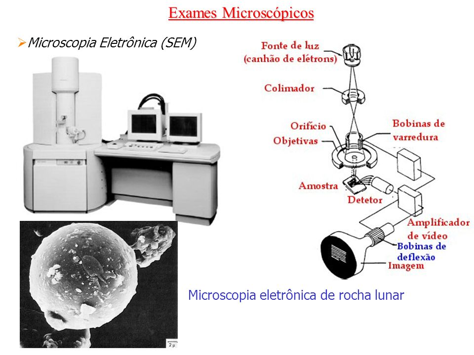 Microscopia eletrônica de rocha lunar